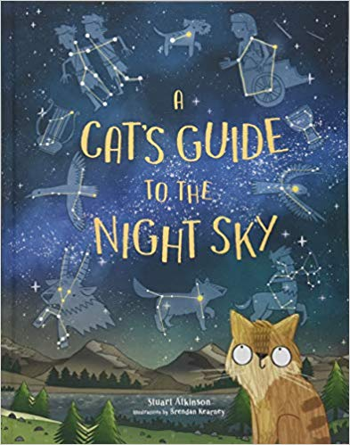 cats guide night